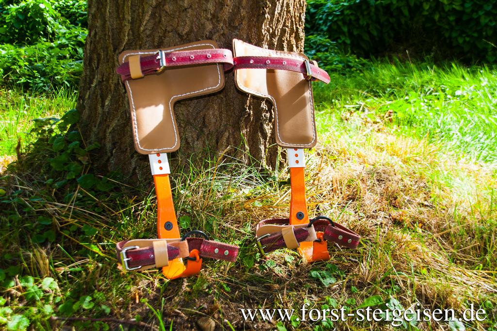 Kletterausrüstung Forst : Hambacher forst ein wald in schockstarre deutschland dw